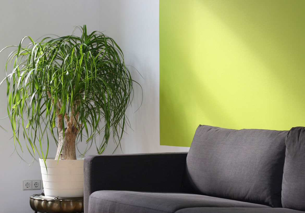 Refreshing Ideas to Update and Renew Your Living Room | Home ...