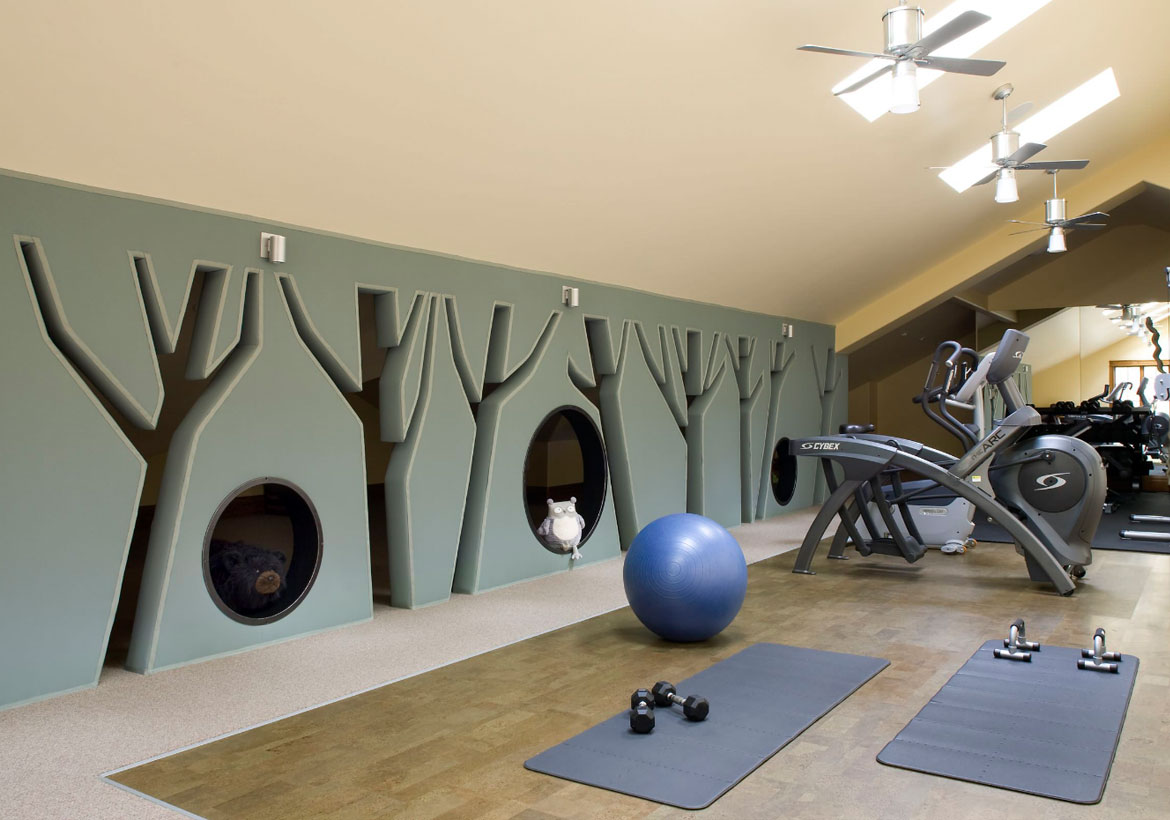 Perfect Extraordinary Home Gym Design Ideas   Sebring Design Build