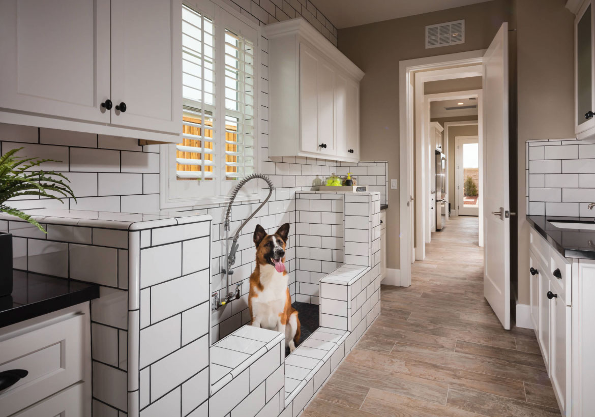 Outstanding Dog Shower Ideas & Pet Washing Stations - Sebring Design Build