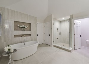 Bathroom-Naperville-IL-Illinois-SebringDesignBuild