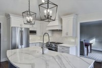 Kitchen-Lisle-IL-Illinois-SebringDesignBuild-cover