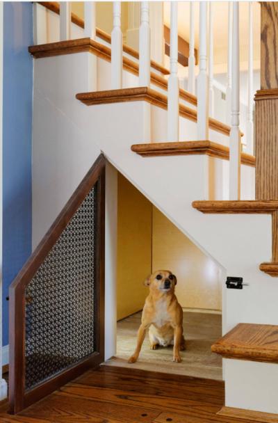 Dog Room Decorating Ideas Leadersrooms
