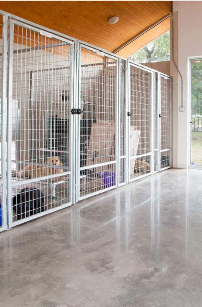 31 Dog Room Decor Ideas Sebring Design Build