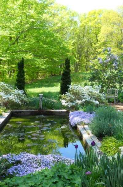 backyard-koi-fish-pond-design-ideas
