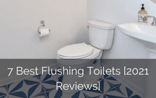 best-flushing-toilets-sebring-design-build