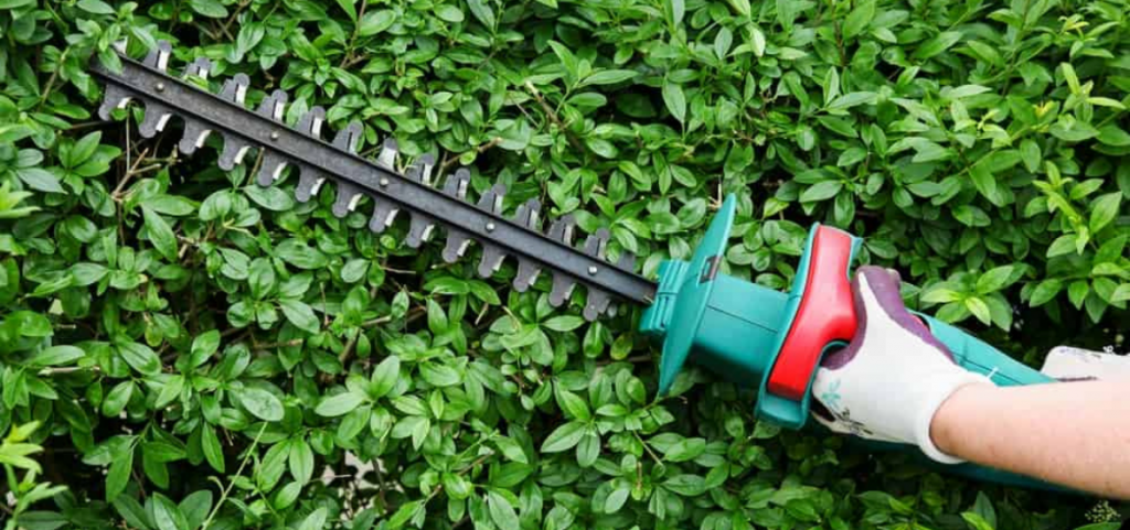 best-cordless-battery-electric-hedge-trimmer-reviews